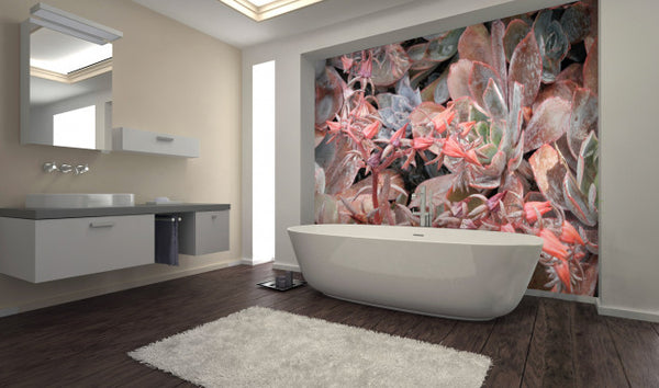 Rose Succulents <br> Brenda Rosenberg - Trendy Custom Wallpaper | Contemporary Wallpaper Designs | The Detroit Wallpaper Co.