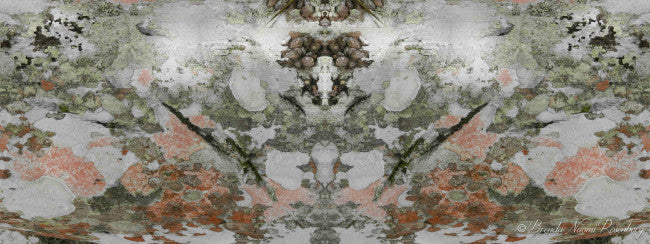 Tree Bark <br> Brenda Rosenberg - Trendy Custom Wallpaper | Contemporary Wallpaper Designs | The Detroit Wallpaper Co.