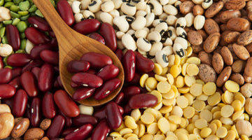 Contributions of Kidney Beans to Health
