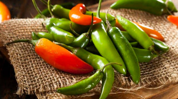 Contributions of Serrano Pepper to Health