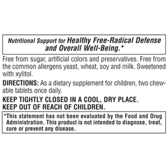 Sugar Free Vitamin C Children's Chewable - Orange Juice Flavor Supplement Label