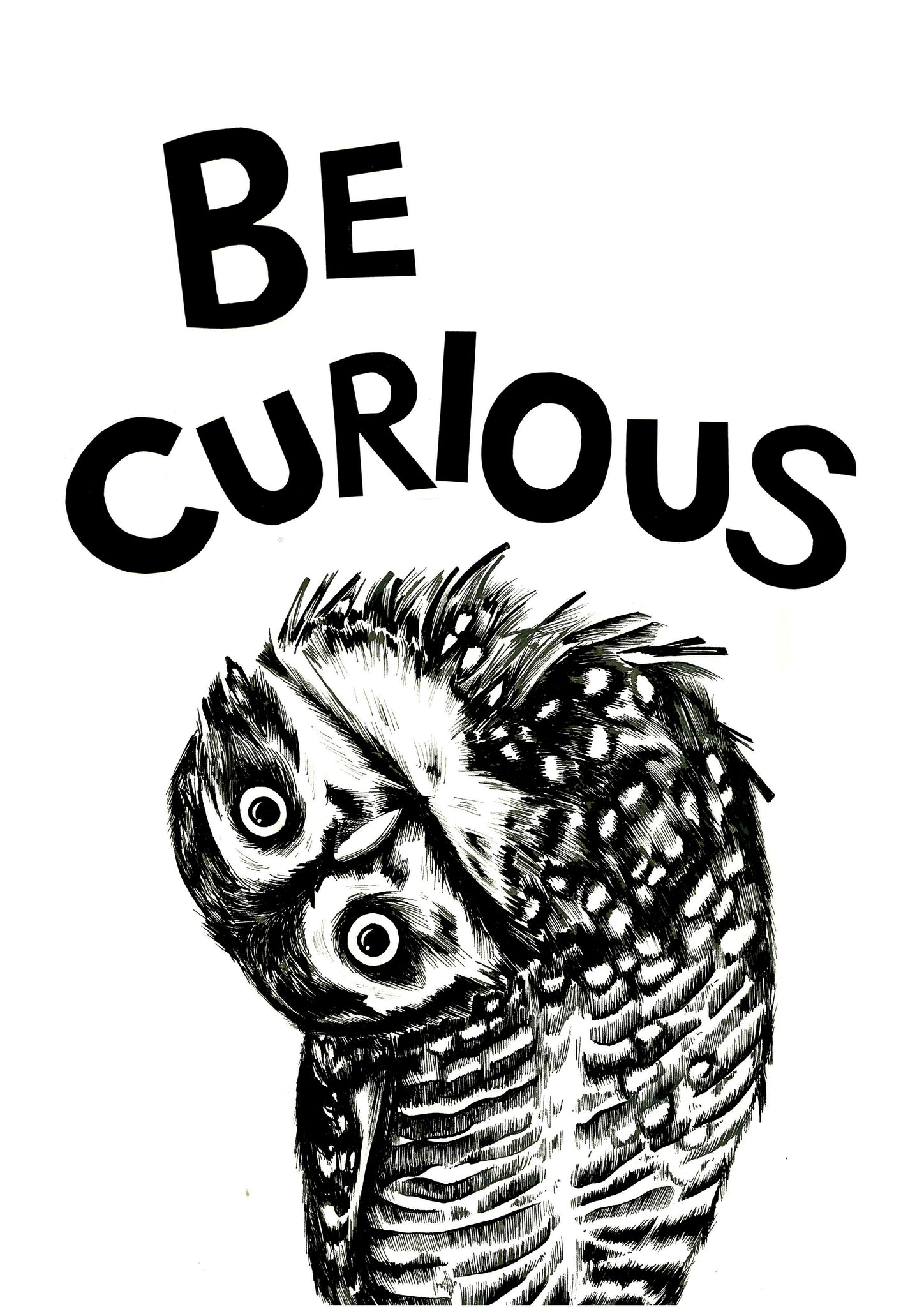 Image result for be curious