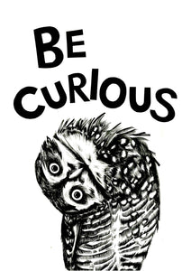 Be Curious Owl
