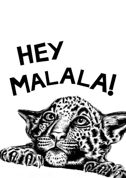Hey! Cheetah