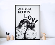 Load image into Gallery viewer, All You Need Is Love Parrots