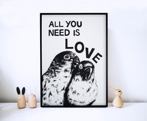 All You Need Is Love Parrots