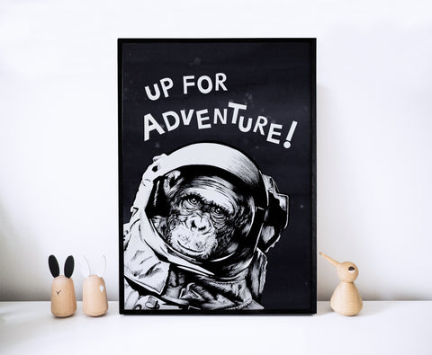Adventure Space Monkey