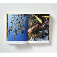 Load image into Gallery viewer, BOOK - KAI LINKE IN JAPAN