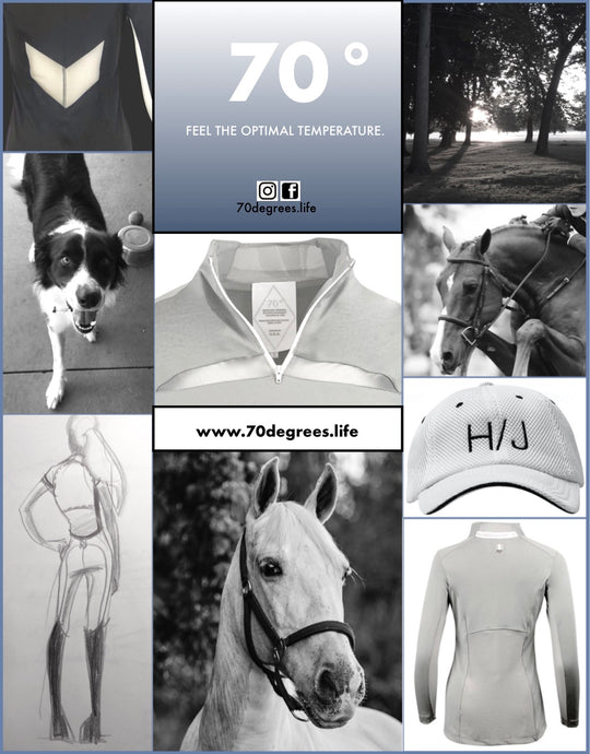 Come visit 70° at the World Equestrian Center in Wilmington, Ohio October 23-27, 2019.