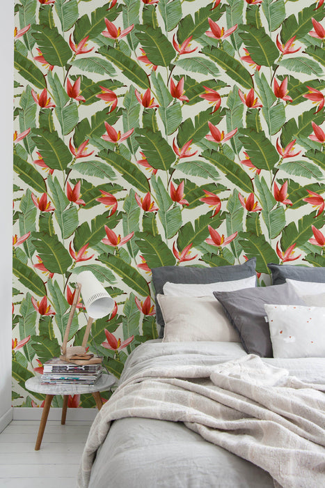 Tropical Wallpaper - Heliconia Wallpaper