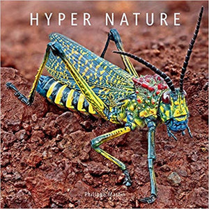 HYPER NATURE  by Phillippe Martin