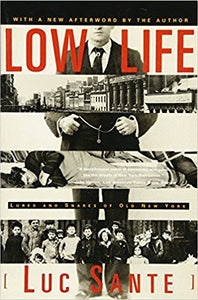 LOW LIFE: LURES AND SNARES OF OLD NEW YORK  by Luc Santee