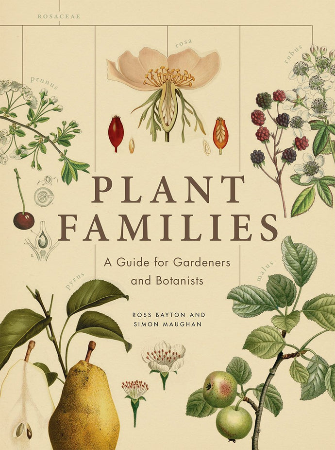 PLANT FAMILIES: A GUIDE FOR GARDENERS AND BOTANISTS  by Simon Maughan
