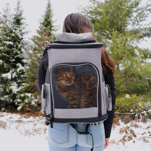 Modern Backpack