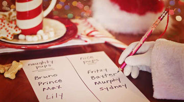 Ivy's Christmas wish list