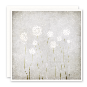 Dandelion Puffs Print on Greeting Card by artist Susan Case