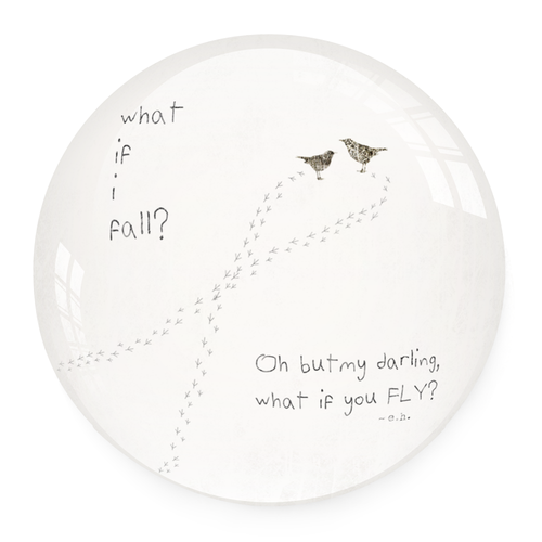 Paperweight - What If I Fall Oh My Darling What If You Fly