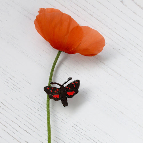 Burnet Moth Enamel Pin