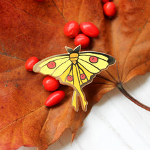 Madagascan Moon Moth enamel Pin