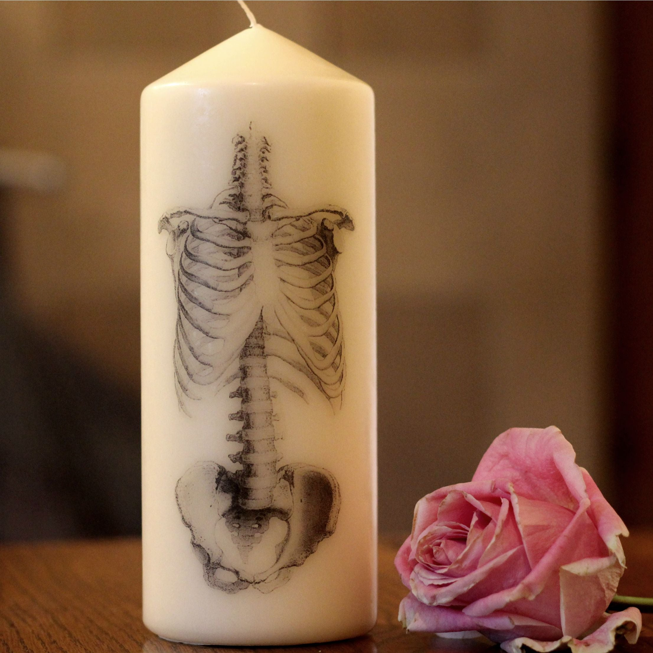 Anatomical Spine Candle - ByCandlelight27