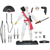 Hasbro GI Joe 30th Anniversary Renegades Storm Shadow