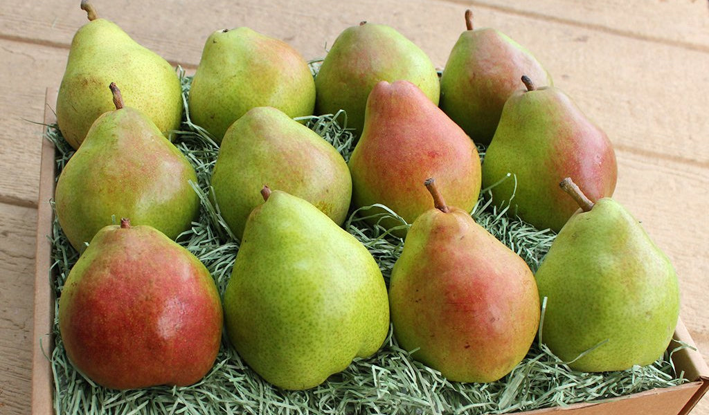 Gourmet Pear Gift Box