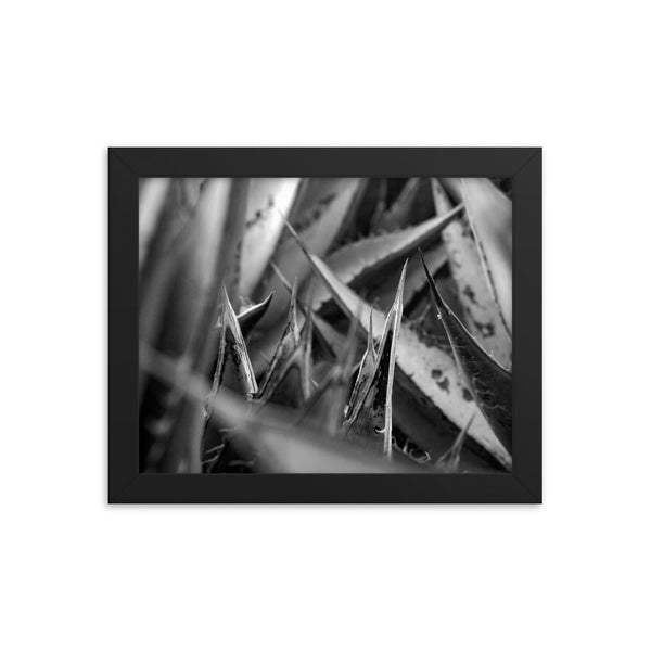 The Nest Framed photo paper poster