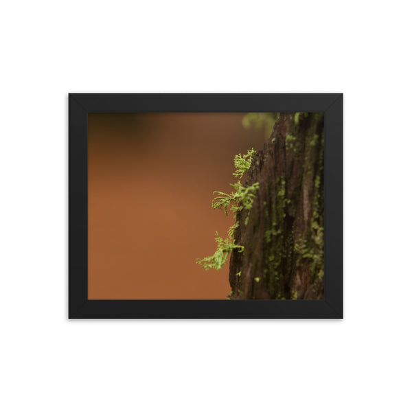 Little World Framed photo paper poster