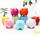 Cute Piggy Money Bank