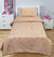 Single Bed Sheet With 1 Pillow - B 1