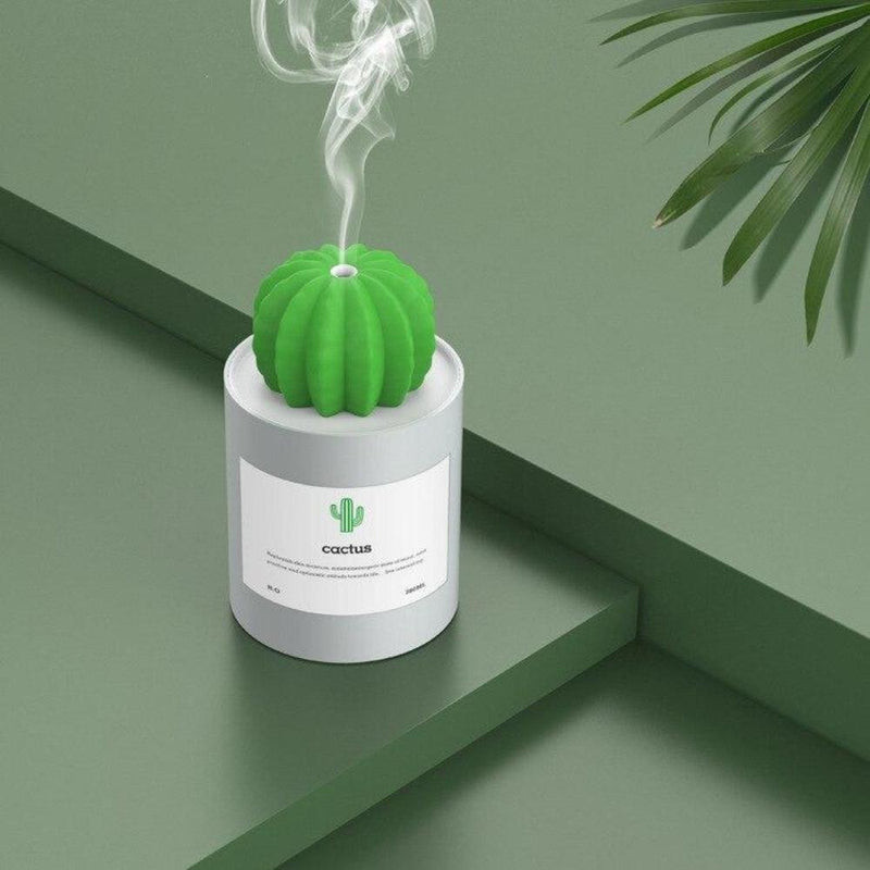 Humidificateur d'air mini cactus Humidificateur d'air Airissime Blanc