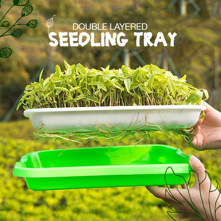 Double Layered Seedling Tray
