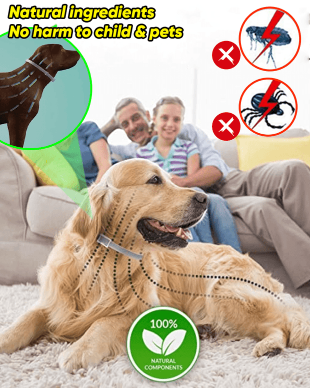Anti Flea and Tick Collar