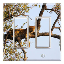 Load image into Gallery viewer, Leopard on the Tree Safari