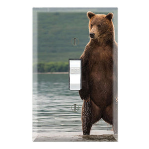 Grizzly Bear Standing River