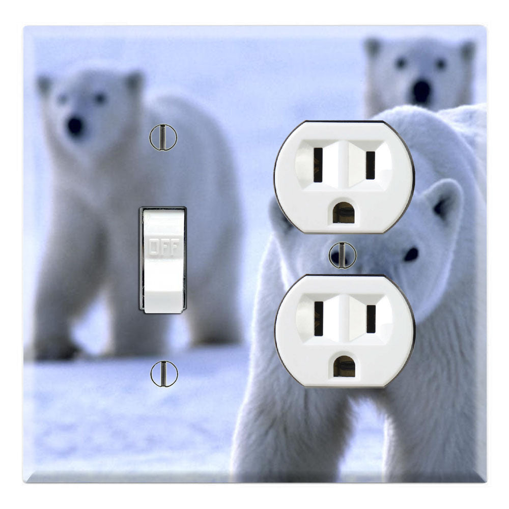 Poar Bear Family Arctic