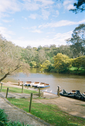 A picturesque river scene, featuring abundant greenery lining the river bed, a collection of little row boats tied to the dock, and a few white geese nearby.
