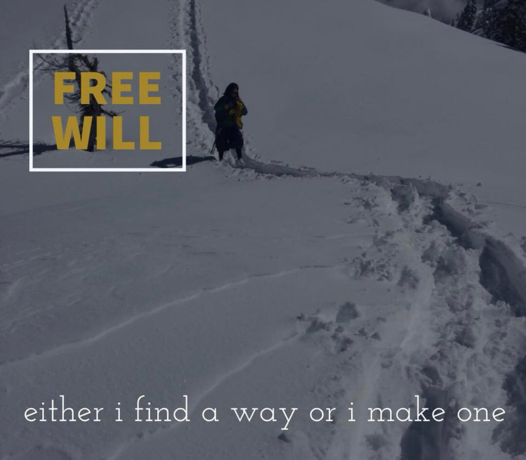 Light Up Your Light : Free Will