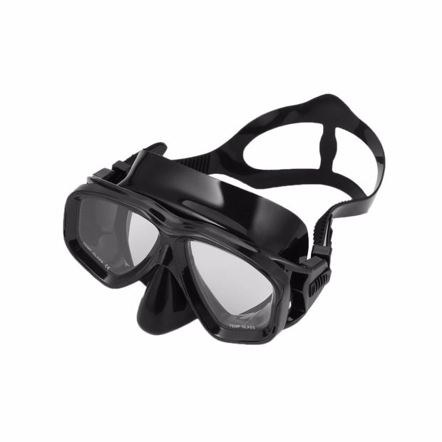 Professional Diving Masks & Dry Snorkel Set