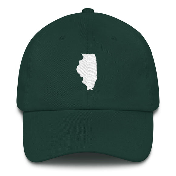 State of Illinois Outline - Green