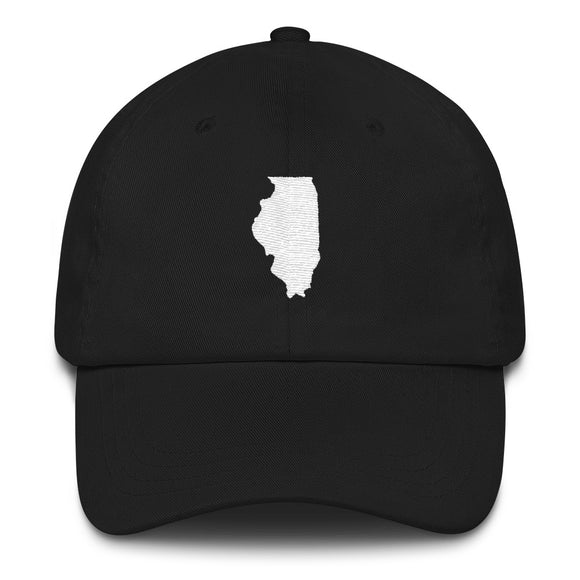 State of Illinois Outline - Black