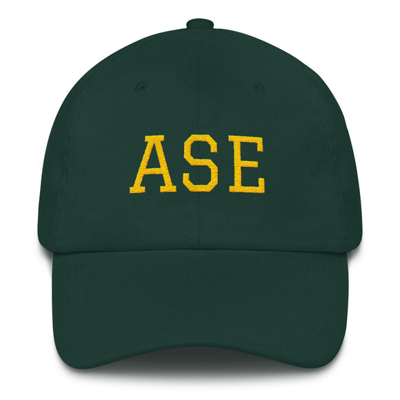 Aspen ASE Airport Code Dad Hat - Green
