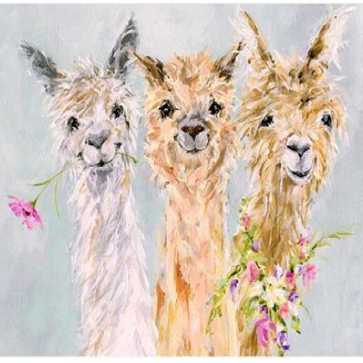 "Art class Melbourne Sunday October 27 ""Alpaca Gang""."