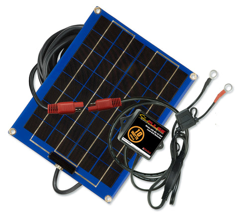 SolarPulse 10 Watt Charger