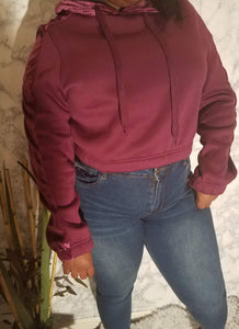 Plus Size Cropped Velvet Accent Hoodie