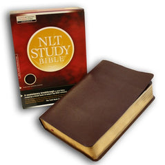 Study Bible - NLT, Burgundy, Bonded Leather