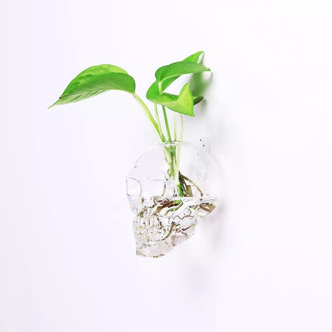 2-Pc Set of Wall Hanging Glass Skull Planters