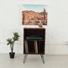 Load image into Gallery viewer, Ibiza Record Holder Organizer Cabinet