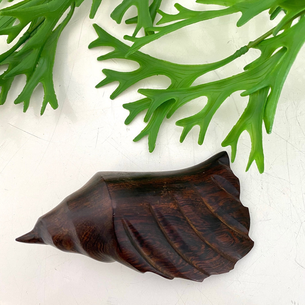Black Walnut Carved Wood Shell 🐚