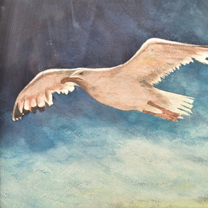 Seagull Watercolor art